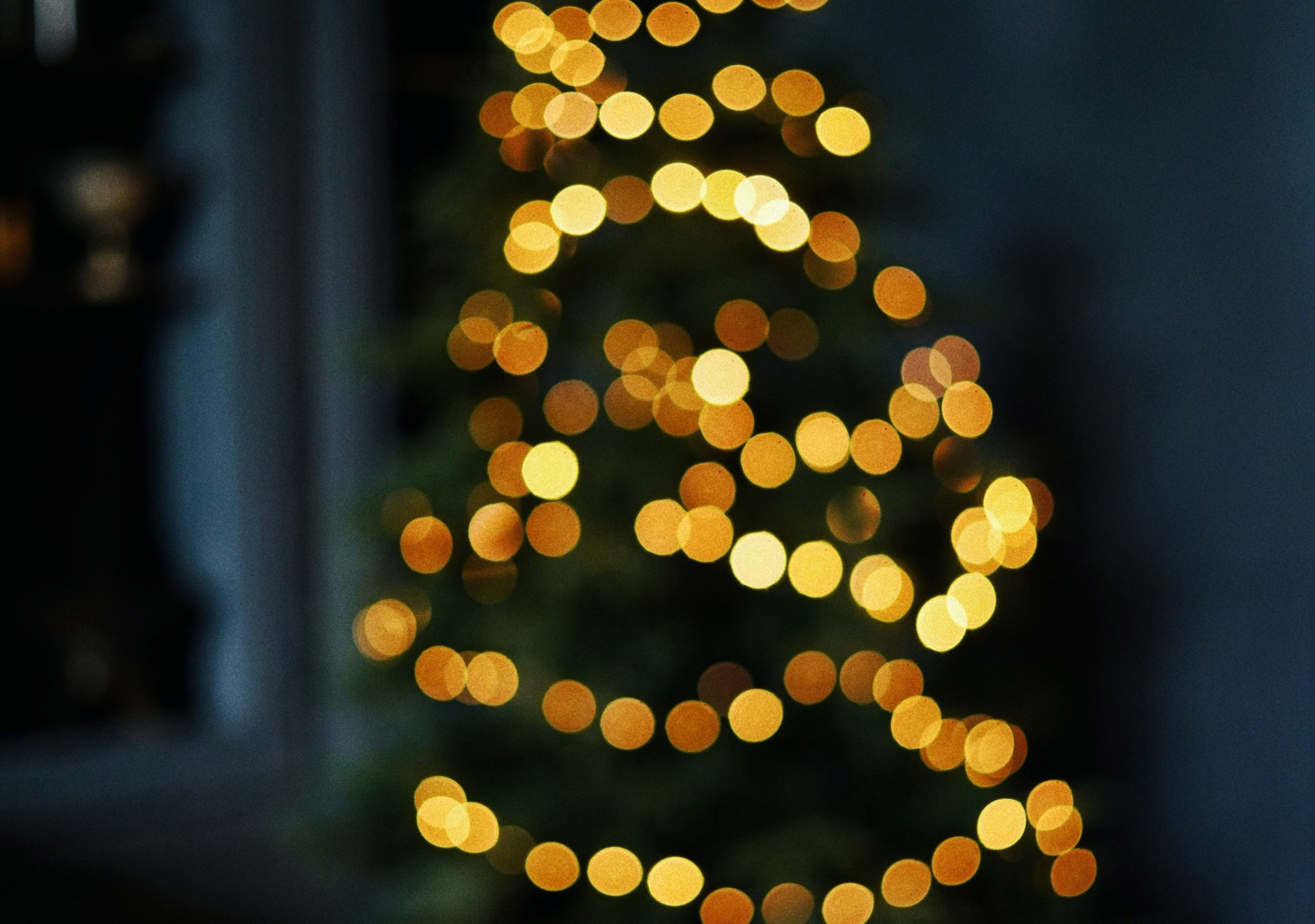 December 6: Christmas Party at the Geological Society